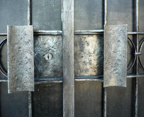 Cancello e cancellata con fiori-4