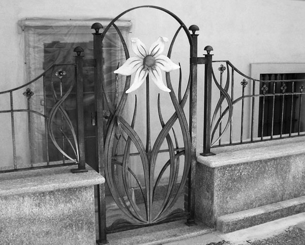 Cancello e cancellata con fiori-5