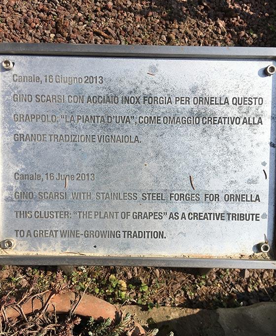 Cantina Matteo Correggia-2
